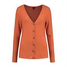 Gafair jeans dames vest